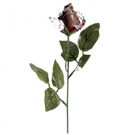 ROSA de CHOCOLATE deKora