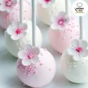 Cakepops blancos y rosas ArtCakes
